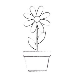 cute sunflower plant in pot vector image vector image