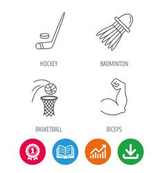 Ice hockey basketball and badminton icons vector