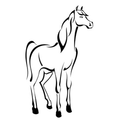 Tattoo standing horse vector image vector image