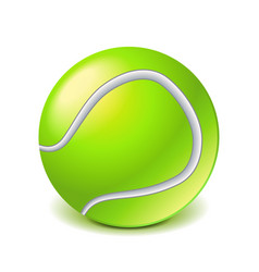 Tennis ball isolated on white vector