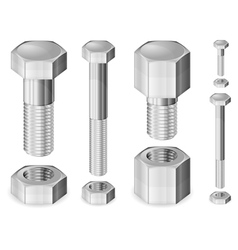 Metal bolts and nuts isolate vector