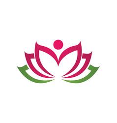 Beauty lotus flowers vector