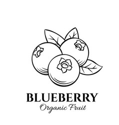hand drawn blueberry icon vector image vector image