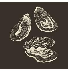 Oysters vintage set vector image
