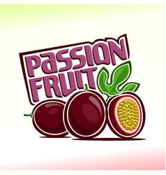 Passion fruit still life vector