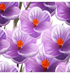 Seamless pattern crocus flowers  eps10 vector