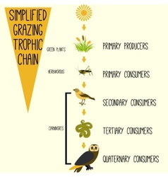 Simplified grazing trophic chain vector