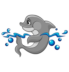 Dolphin in water vector