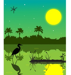 Everglades 2 vector