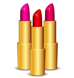 lipsticks vector image