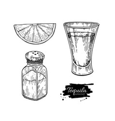 Tequila shot glass with lime and salt shaker vector