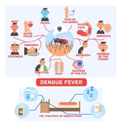 Dengue fever infographics vector