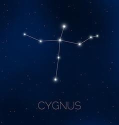 Cygnus constellation in night sky vector image vector image
