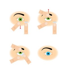 Instructions for the use of contact lenses vector