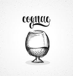 Monochrome cognac in glass with calligraphy Sketch vector image