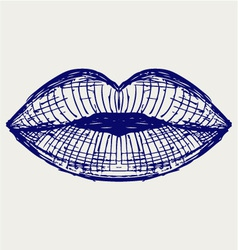 Woman lip mouth kiss vector