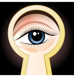 Look through a key hole vector
