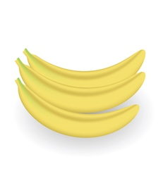 fresh bananas vector image