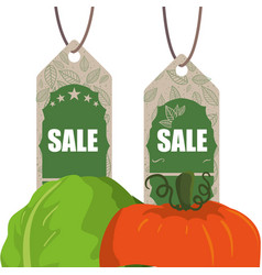 Vegetables shopping sale offer vector
