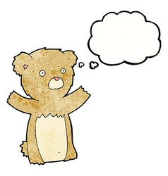 Cartoon teddy bear with thought bubble vector