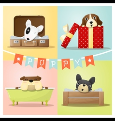 Set of cute dog background vector