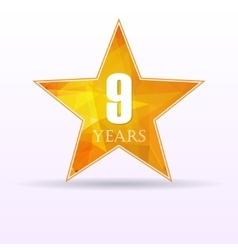 Star background anniversary 9 vector image vector image