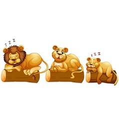Lion family on the log vector