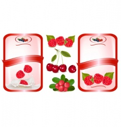 food labels vector image vector image