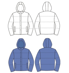 Hooded jacket vector image vector image