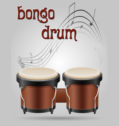 Bongo drums musical instruments stock vector