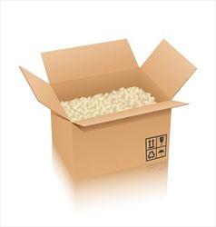 Cardboard box and cushioning material vector image