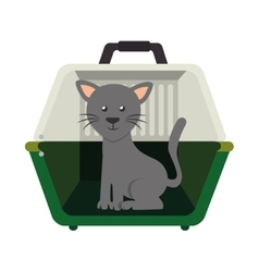 Cute cat in transport box vector