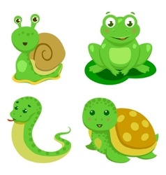 Reptiles and amphibians decorative set in cartoon vector
