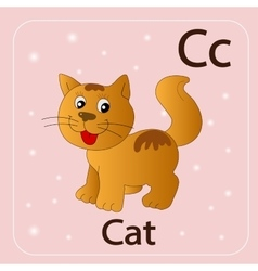 English letters c and red cat vector