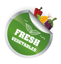 Fresh vegetables health vitamins diet emblem vector