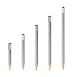 Gray wooden sharp pencils vector