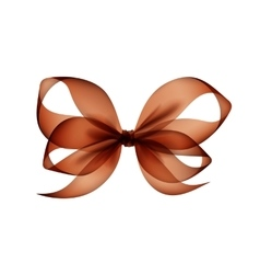 Brown transparent bow top view on white background vector