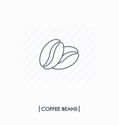 coffee beans outline icon vector image vector image