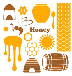 Honey vector