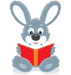 Hare reading a book vector