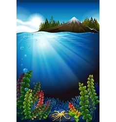 Scene with ocean and the underwater vector