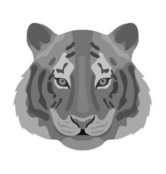 Tiger icon in monochrome style isolated on white vector