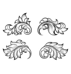 Vintage baroque scroll leaf set in engraving style vector image vector image