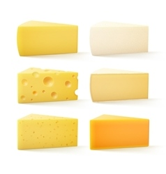 Set of Cheese Swiss Cheddar Bri Parmesan Camembert vector image