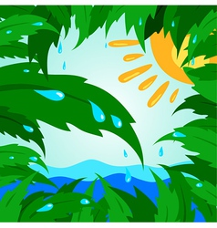 Tropical leaf leaves tree green sun drops rain vector