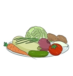 A plate with vegetables vector