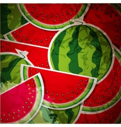 Background from watermelon vector