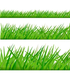 Three grass borders vector