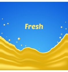 Fresh splash vector