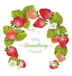 Strawberry wreath banner vector image vector image